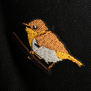 Palawan Flycatcher